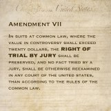 Amendment VII In suits at common law, where the value in controversy shall exceed twenty dollars, the right of trial by jury shall be preserved, and no fact tried by a jury, shall be otherwise reexamined in any court of the United States, than according to the rules of the common law.